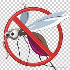 Împotriva insectelor